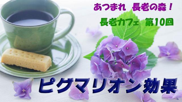長老カフェ~ピグマリオン効果~